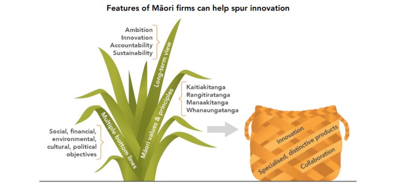Features of Maori firms